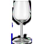 Wijnglazen  29cl  12 stuks